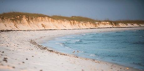 Gulf-Islands-National-Seashore.jpg