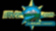 irv2_logo_2.png