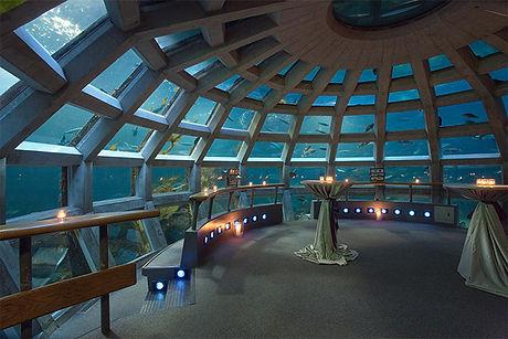 Aquarium-Photos-017.jpg
