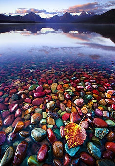 montana Pebble-Shore-Lake-in-Glacier-Nat