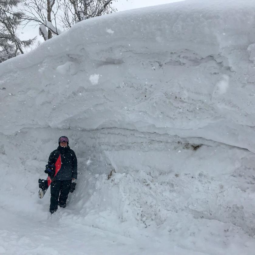 Snow in Niseko