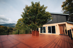 Large balcony overlooking forest.