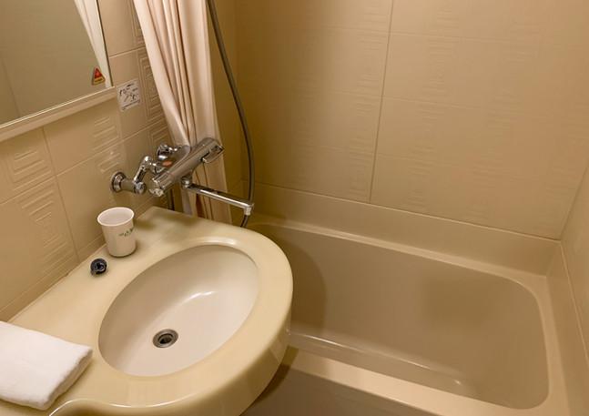 Ensuite bathroom + Toilet