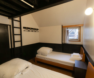 Twin beds and ladder to loft
