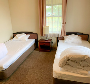 This room can have twin beds or a king bed.