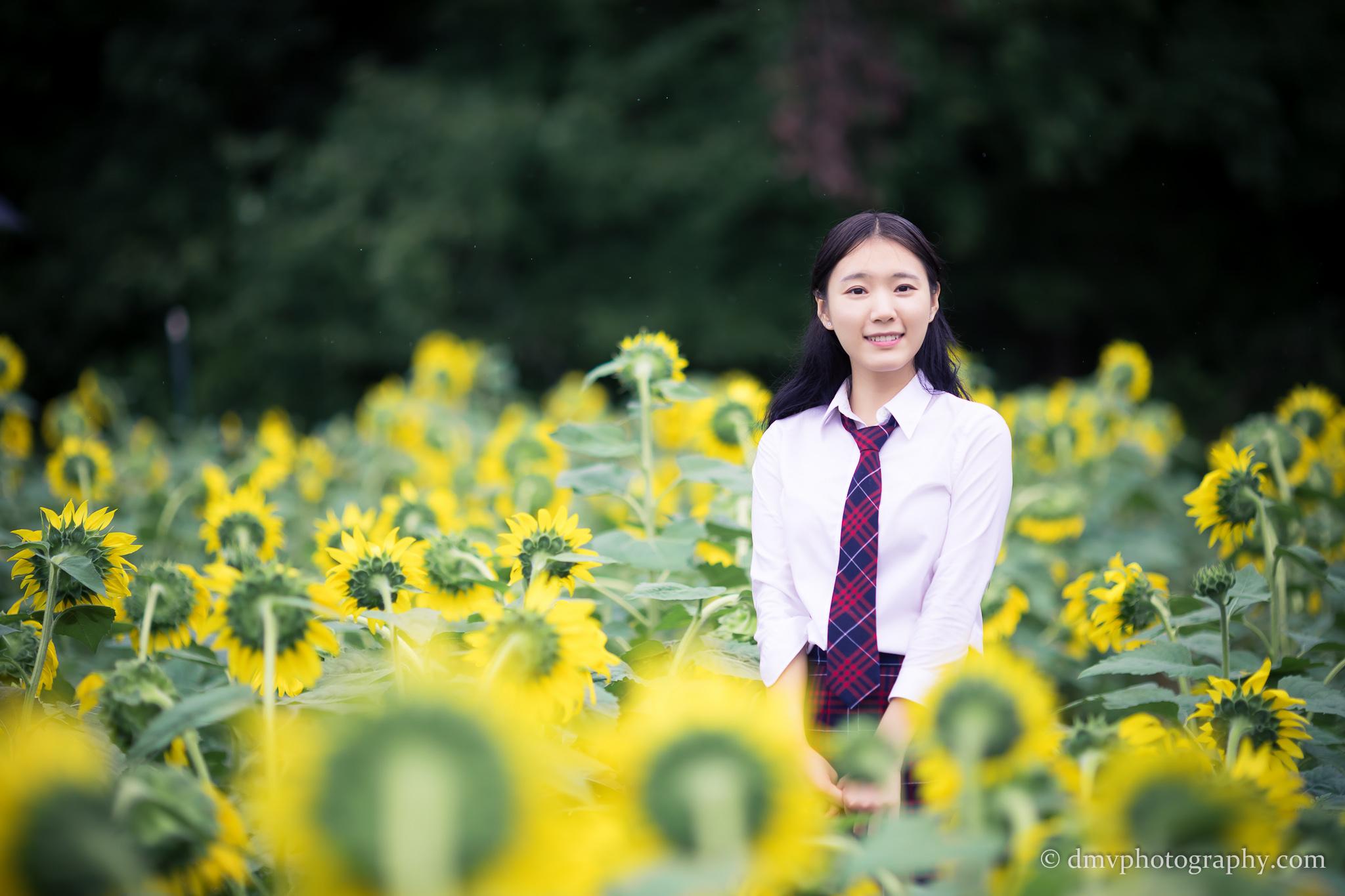 2017-07-29 - Yu Jie Sunflower - 00031