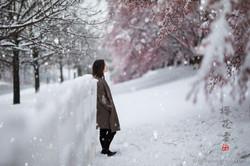 _D4_8494-snow
