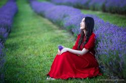 2016-06-24 - Zhu Xing - Lavender Field - 00063