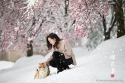 _D4_8281-snow