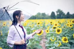 2017-07-29 - Yu Jie Sunflower - 00001