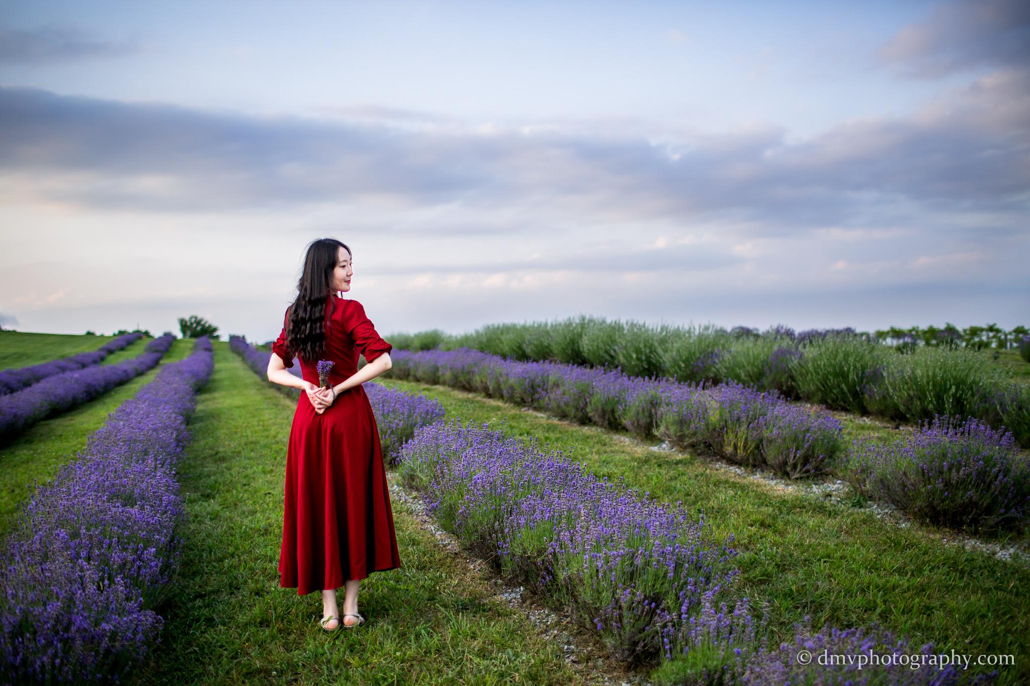 2016-06-24 - Zhu Xing - Lavender Field - 00041