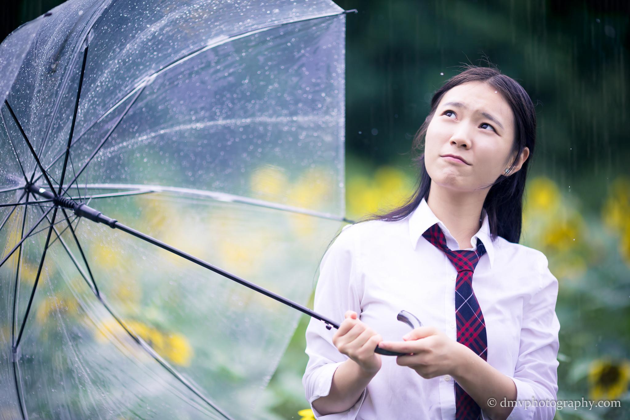 2017-07-29 - Yu Jie Sunflower - 00006