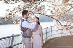 2017-03-29 - Cherry Blossom  - 00049