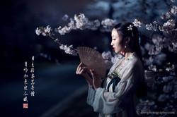 2017-03-27 Night Cherry Blossom - 00054v2