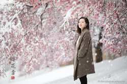 _D4_8365-snow
