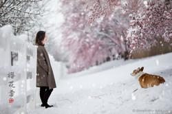 _D4_8496-snow
