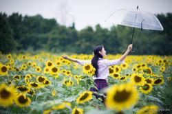 2017-07-29 - Yu Jie Sunflower - 00019