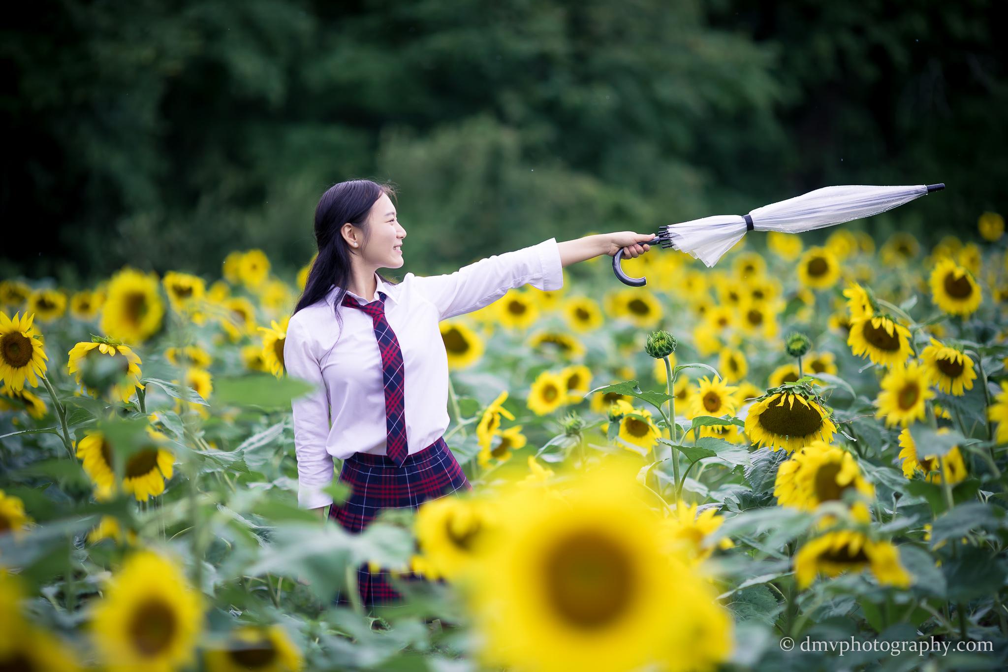 2017-07-29 - Yu Jie Sunflower - 00025