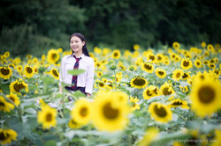 2017-07-29 - Yu Jie Sunflower - 00024