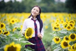2017-07-29 - Yu Jie Sunflower - 00044
