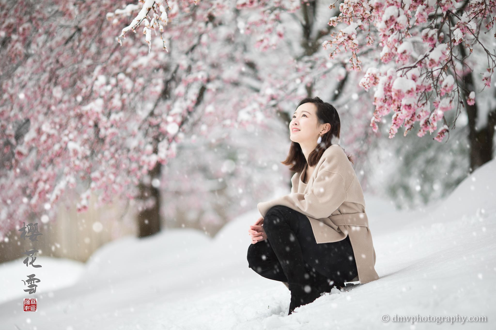 _D4_8300-snow