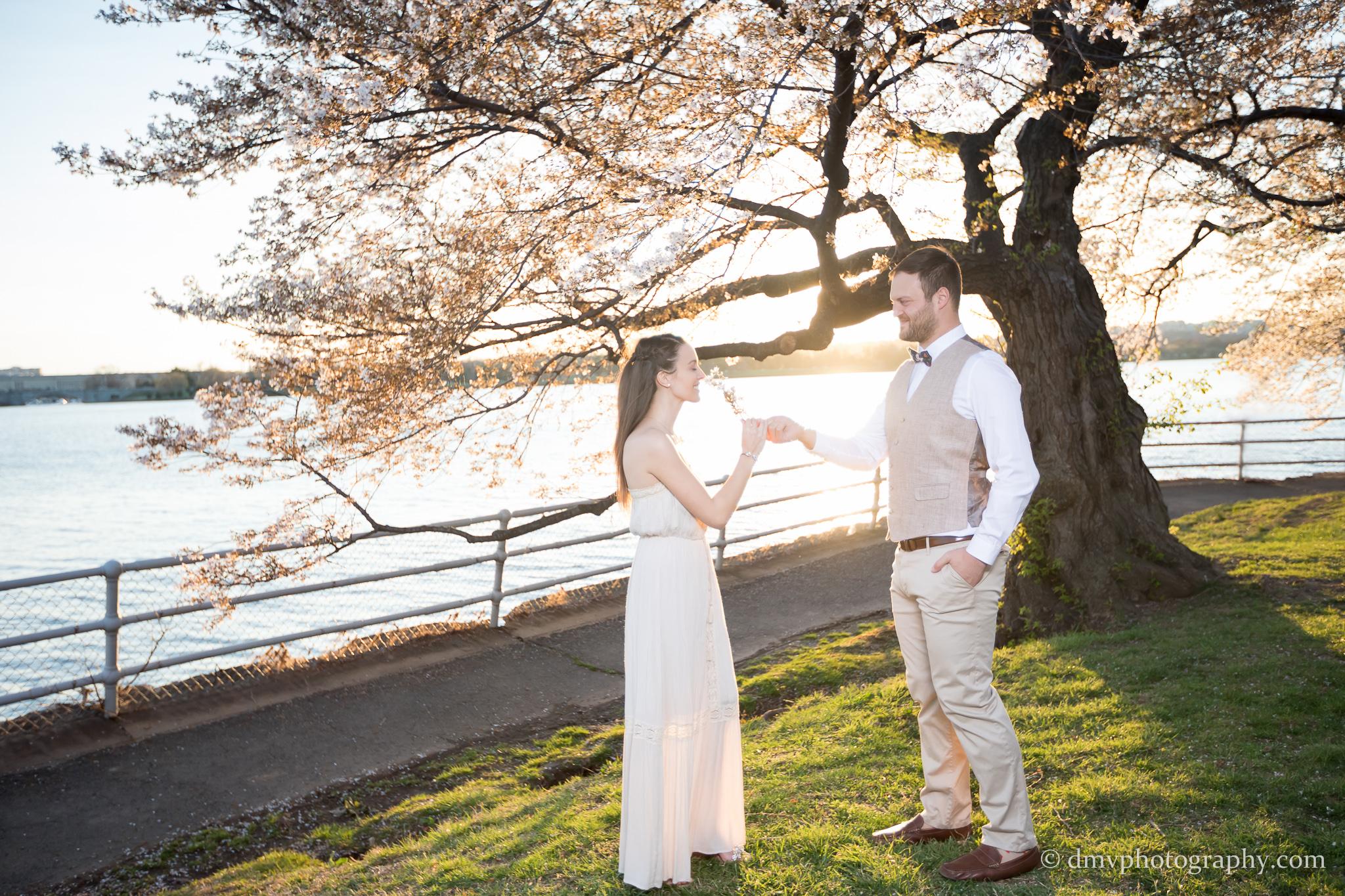 2017-03-29 - Cherry Blossom  - 00128