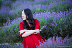 2016-06-24 - Zhu Xing - Lavender Field - 00066