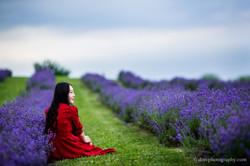 2016-06-24 - Zhu Xing - Lavender Field - 00014