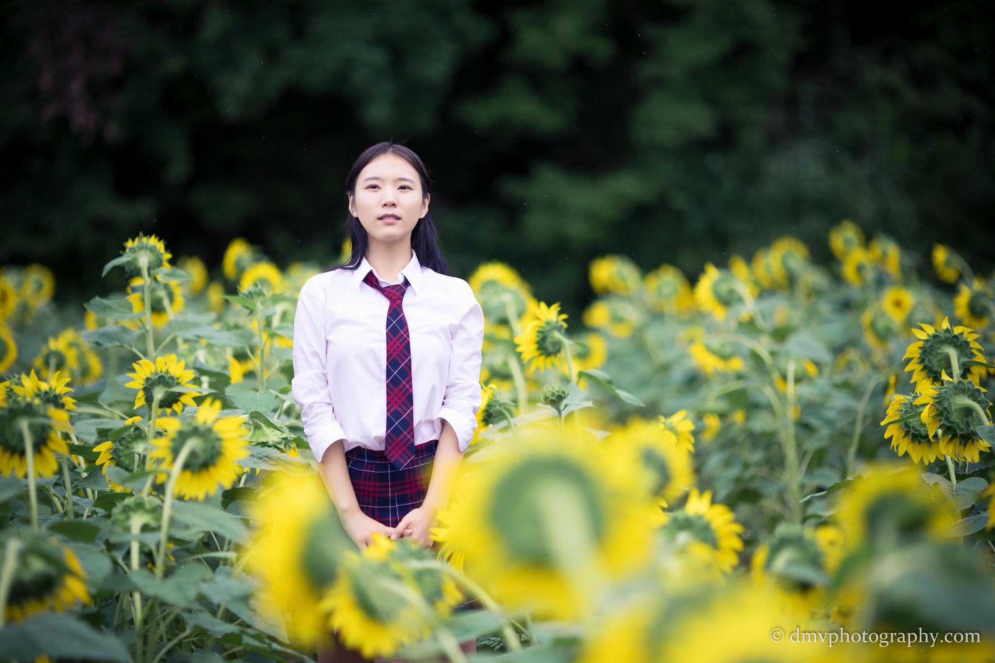 2017-07-29 - Yu Jie Sunflower - 00032