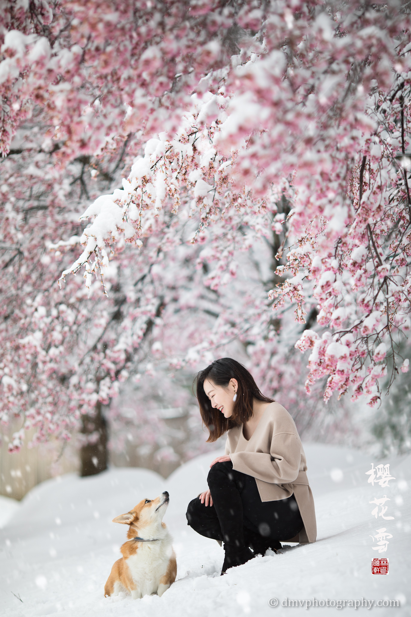 _D4_8295-snow