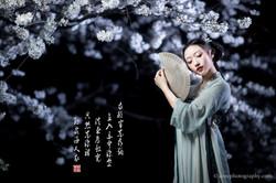 2017-03-27 Night Cherry Blossom - 00041v2