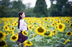 2017-07-29 - Yu Jie Sunflower - 00028