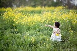2017-04-16 - Youcha Flower 00023