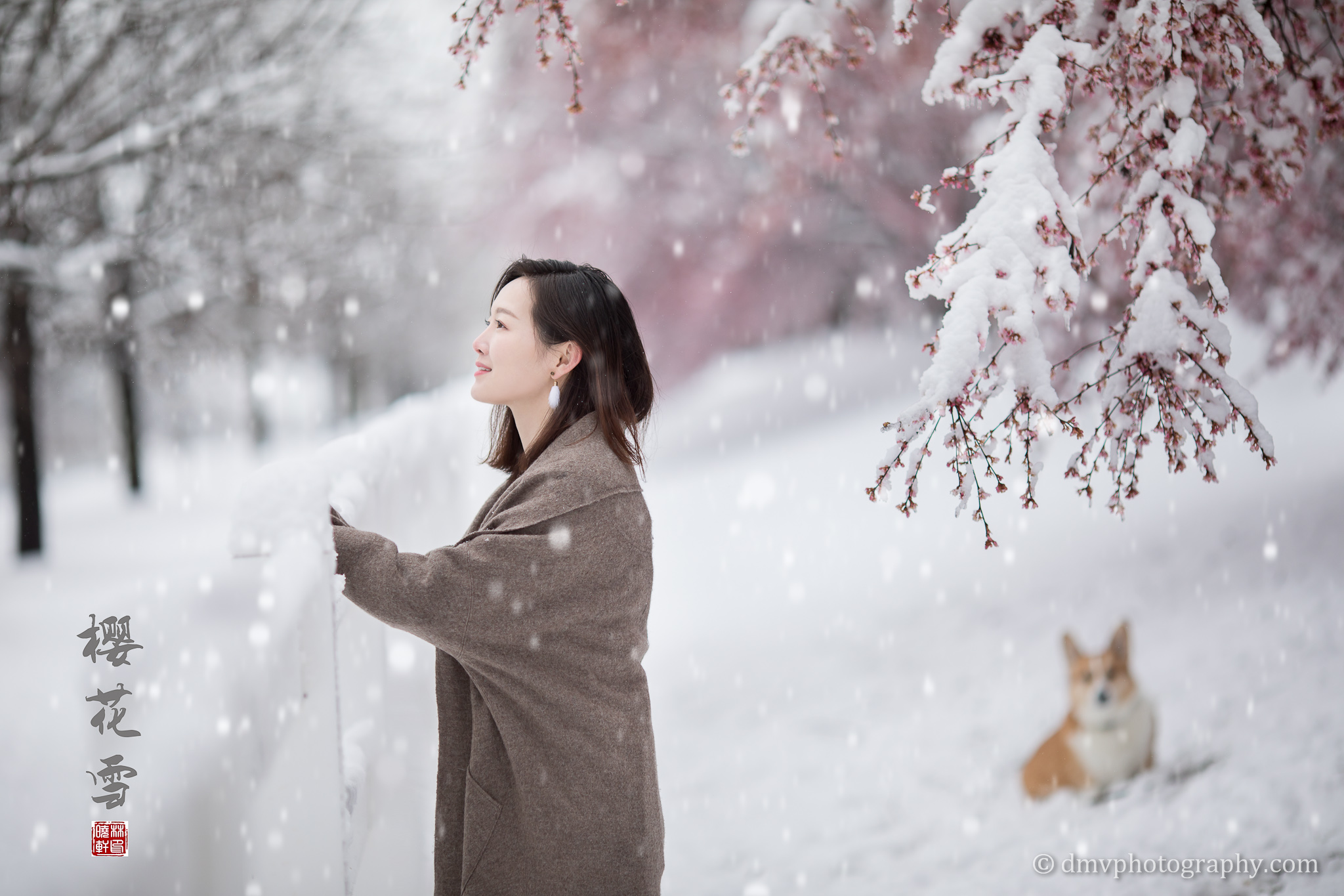 _D4_8552-snow