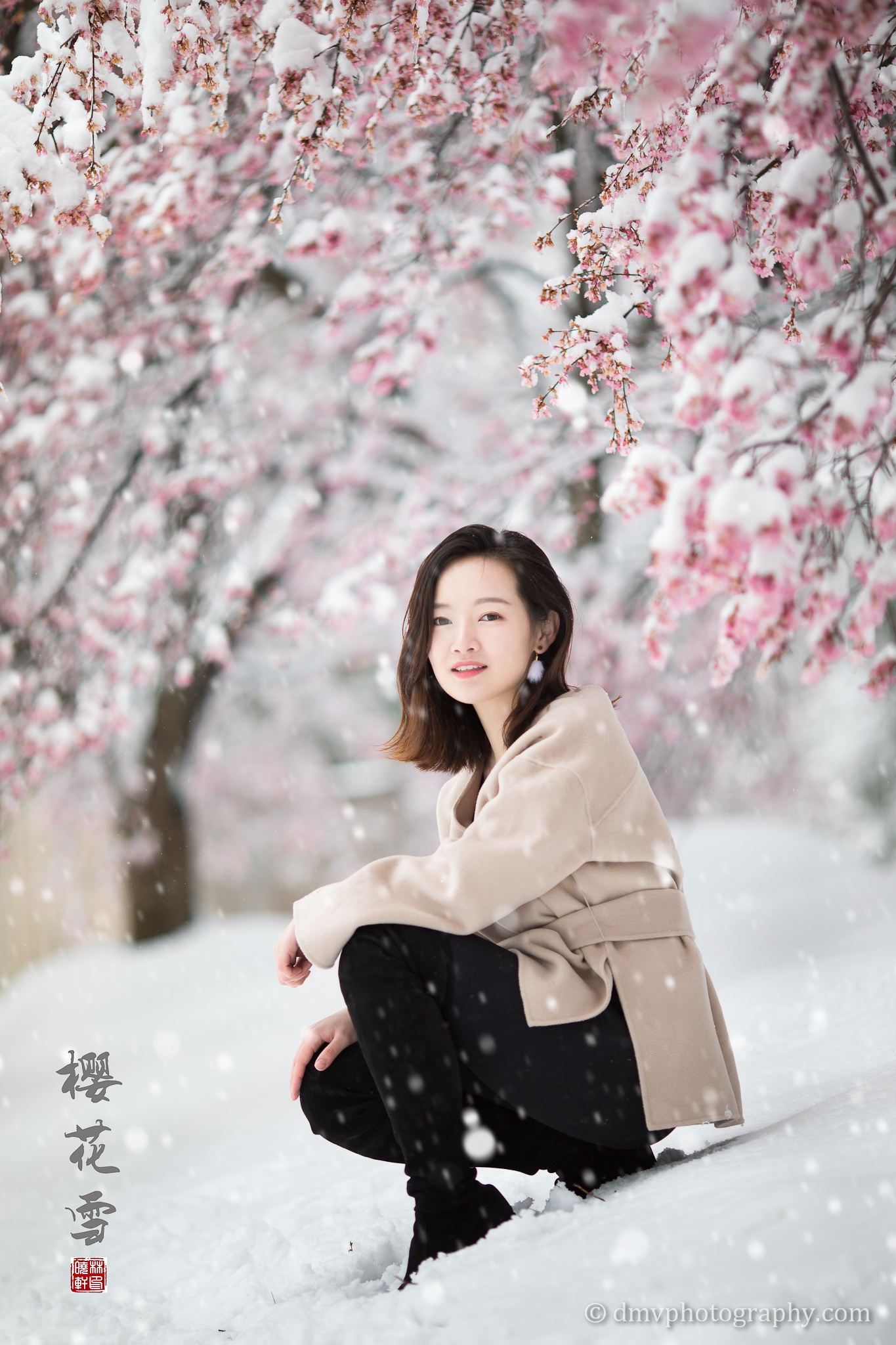 _D4_8329-snow