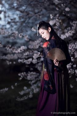 2017-03-27 Night Cherry Blossom - 00087