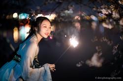 2017-03-27 Night Cherry Blossom - 00206