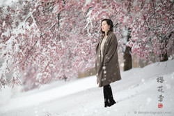_D4_8358-snow