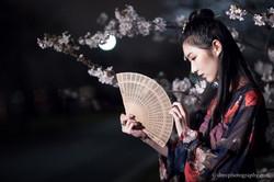 2017-03-27 Night Cherry Blossom - 00068
