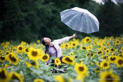 2017-07-29 - Yu Jie Sunflower - 00022
