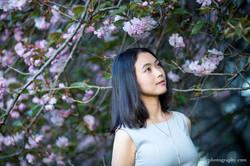 2016-04-17 - Anora Wang - Cherry - 00012