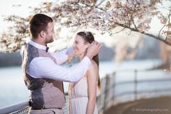 2017-03-29 - Cherry Blossom  - 00084