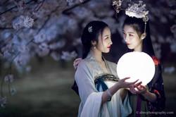 2017-03-27 Night Cherry Blossom - 00122