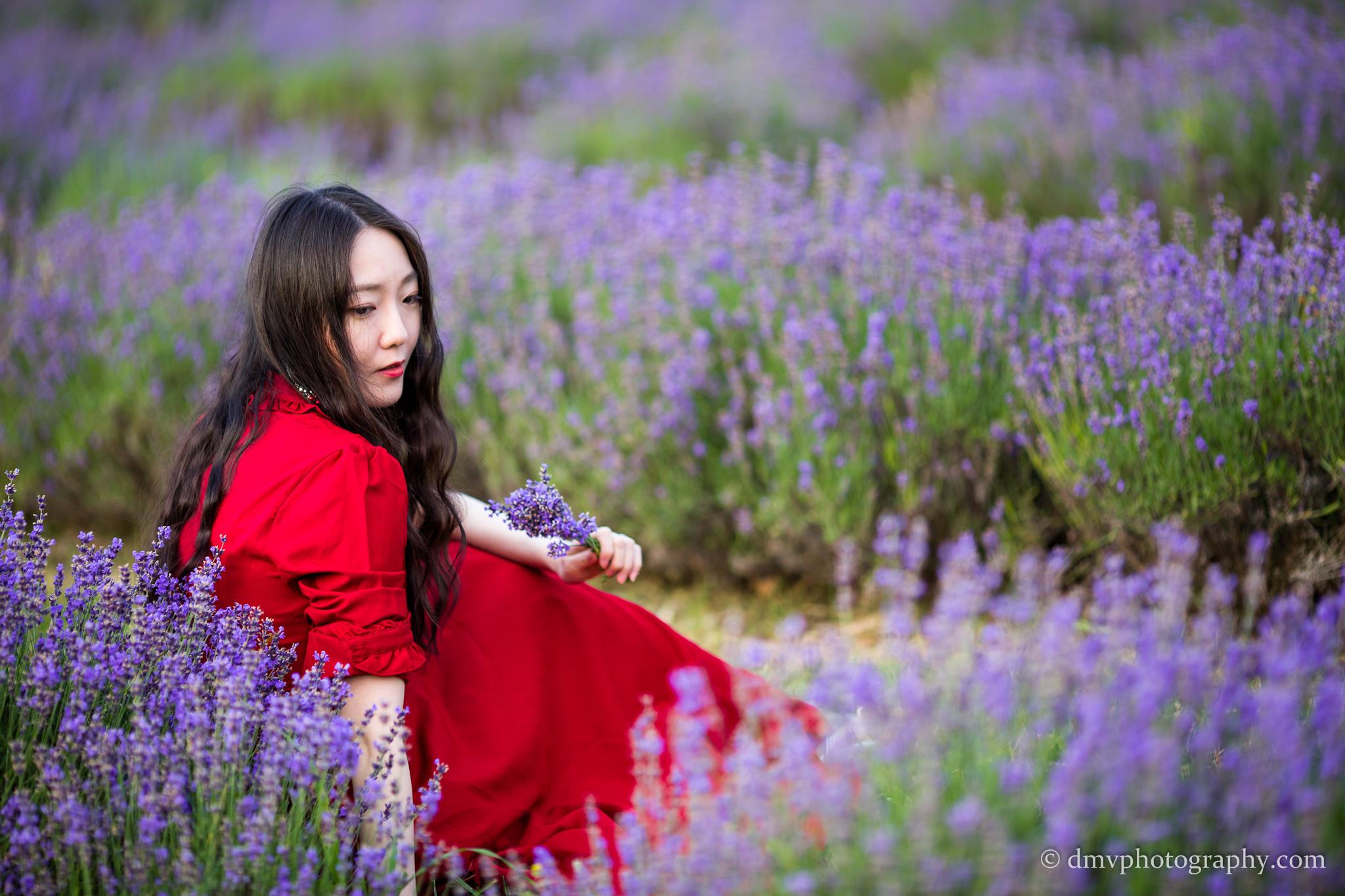 2016-06-24 - Zhu Xing - Lavender Field - 00050