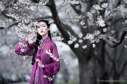 2017-03-25 - Day Cherry Blossom - 00103