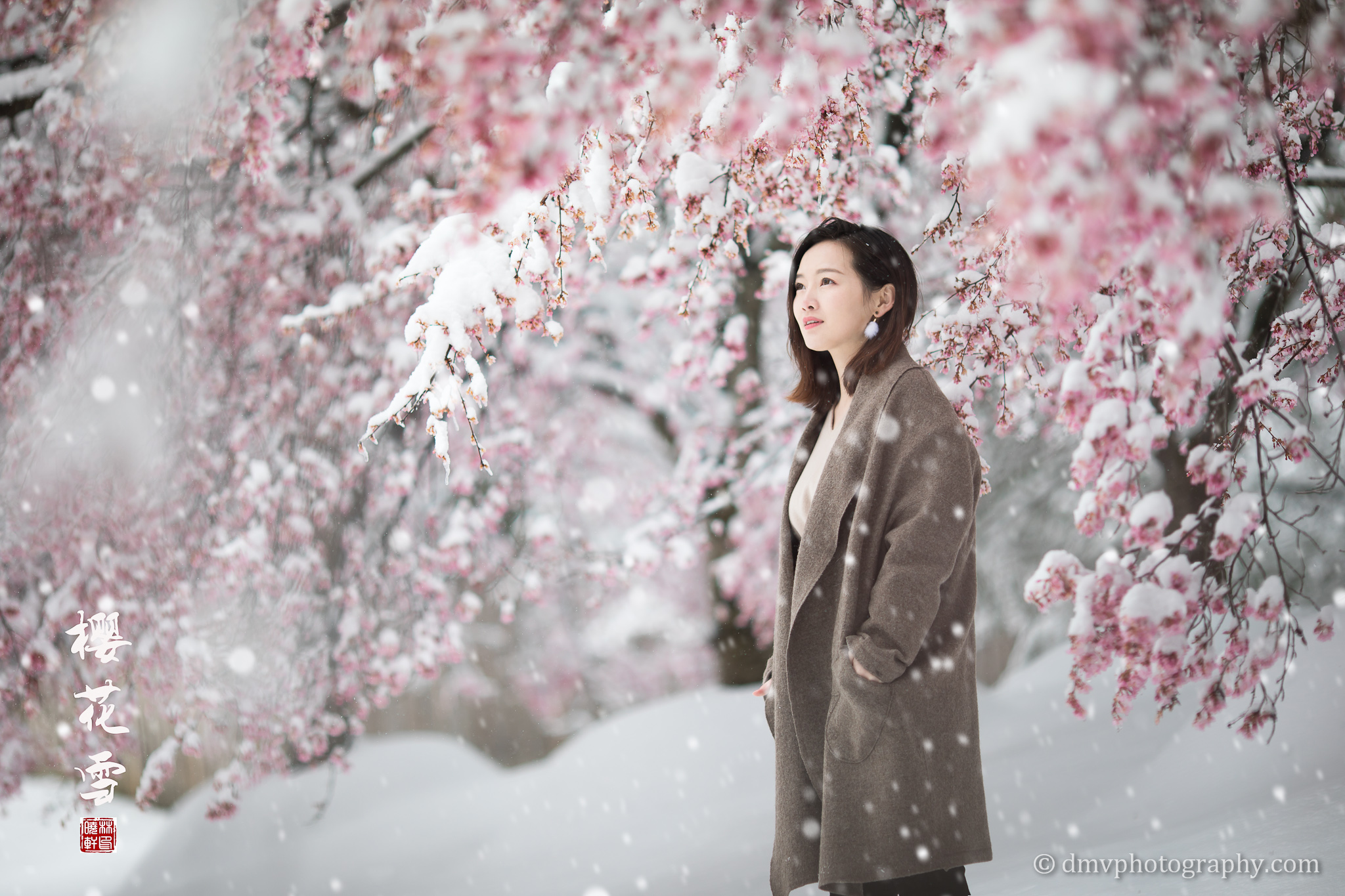 _D4_8272-snow