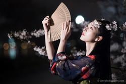 2017-03-27 Night Cherry Blossom - 00069