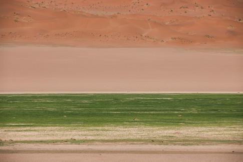 The Green Grass of Sossusvlei