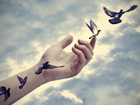 S3NSE: The Practice of Letting Go