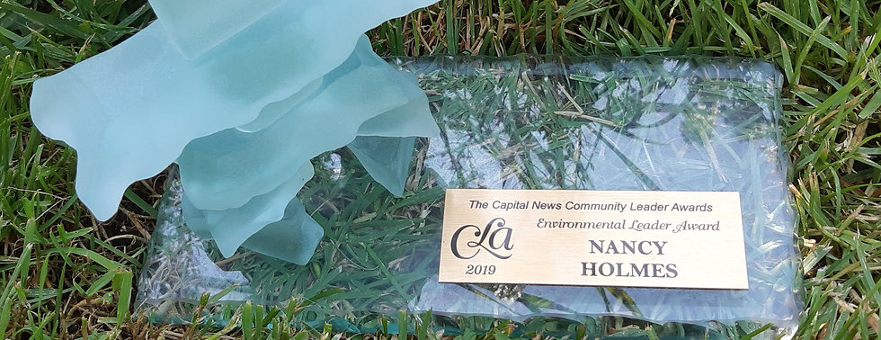 Award 2_edited.jpg